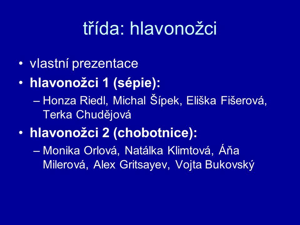 třída: hlavonožci vlastní prezentace hlavonožci 1 (sépie):