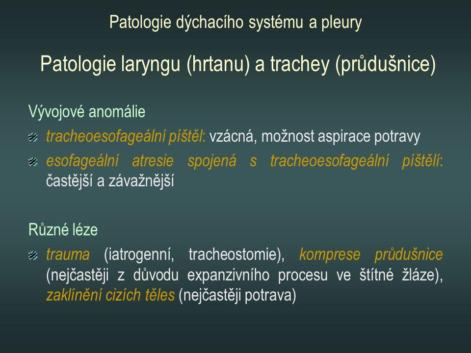 Patologie laryngu (hrtanu) a trachey (průdušnice)