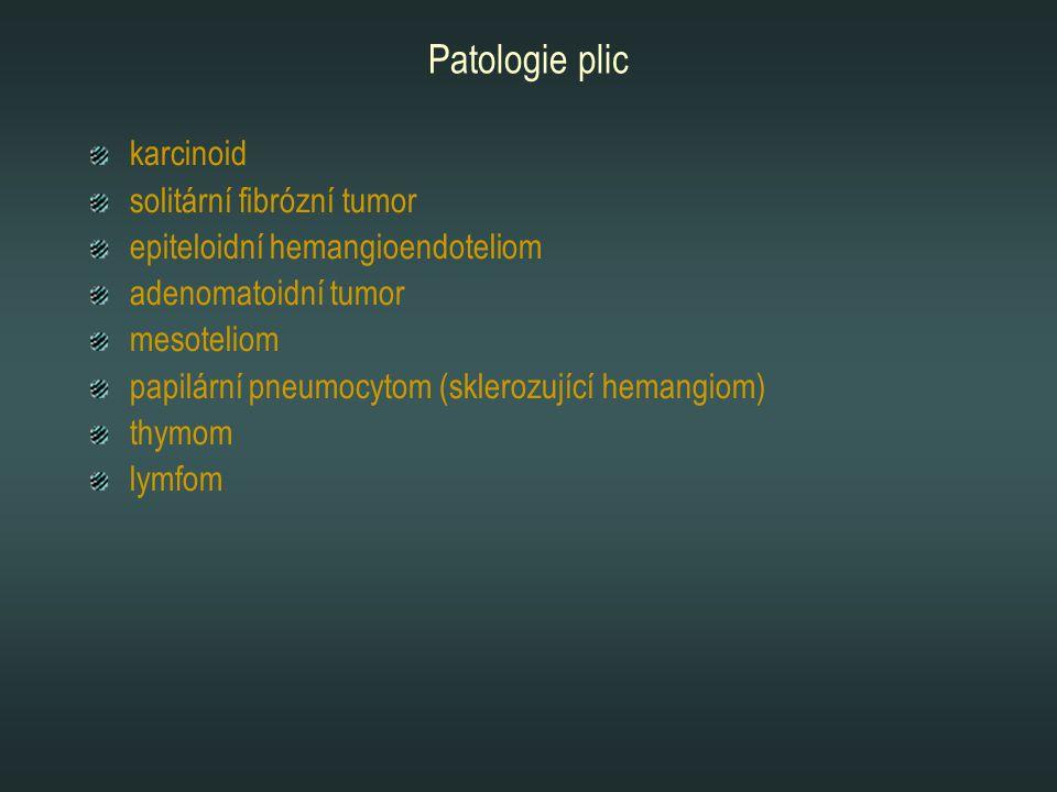 Patologie plic karcinoid solitární fibrózní tumor