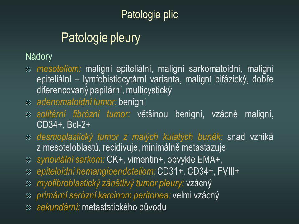 Patologie pleury Patologie plic Nádory