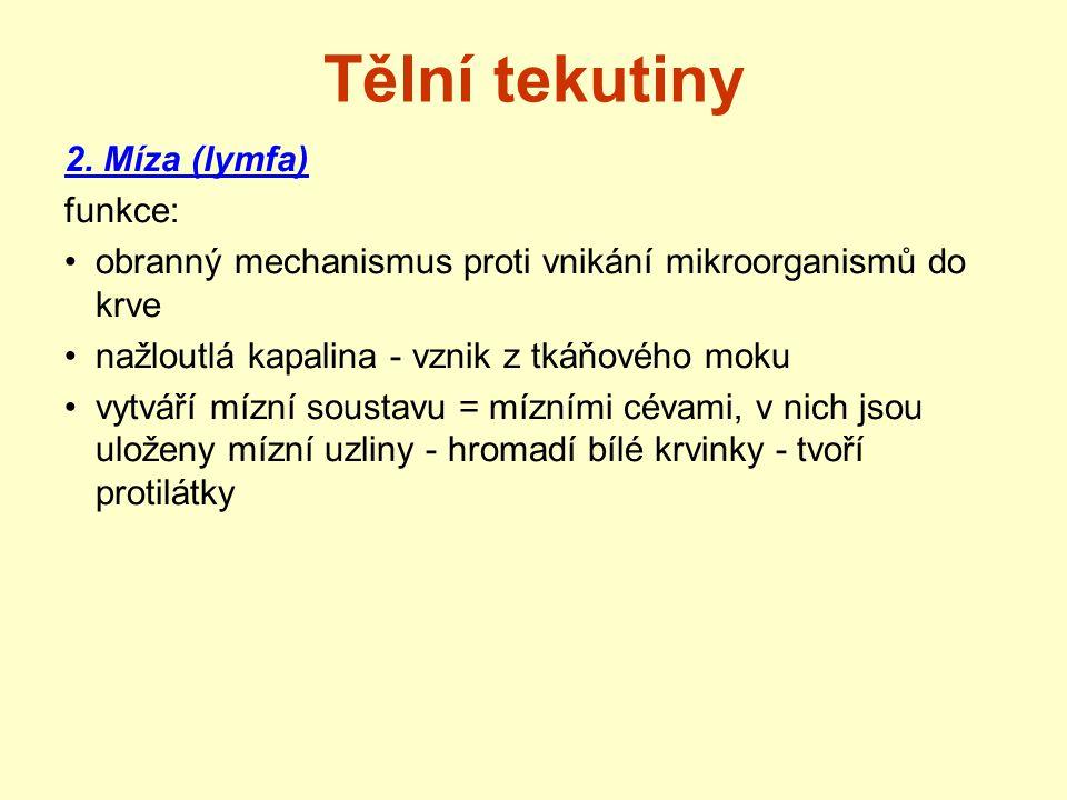 Tělní tekutiny 2. Míza (lymfa) funkce: