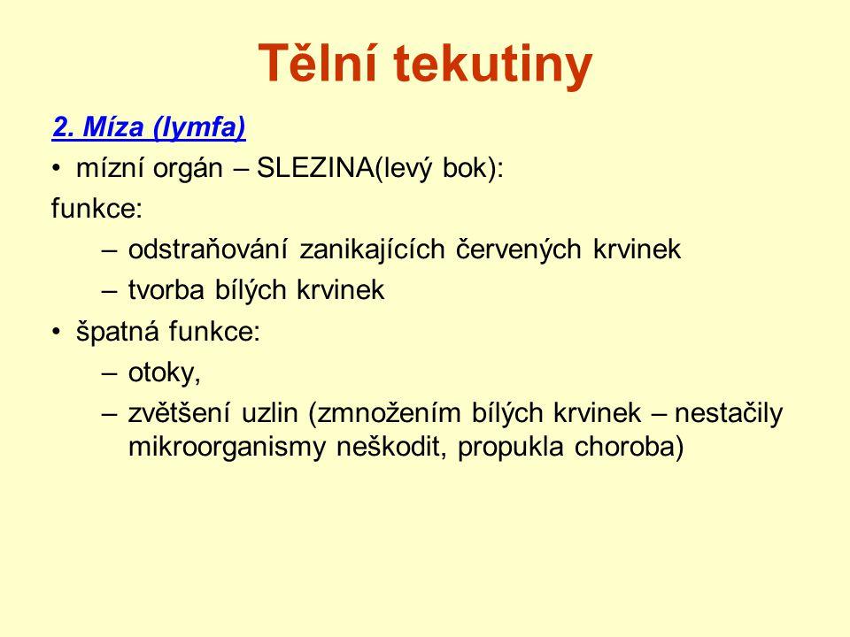 Tělní tekutiny 2. Míza (lymfa) mízní orgán – SLEZINA(levý bok):