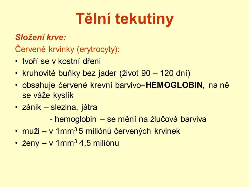 Tělní tekutiny Složení krve: Červené krvinky (erytrocyty):