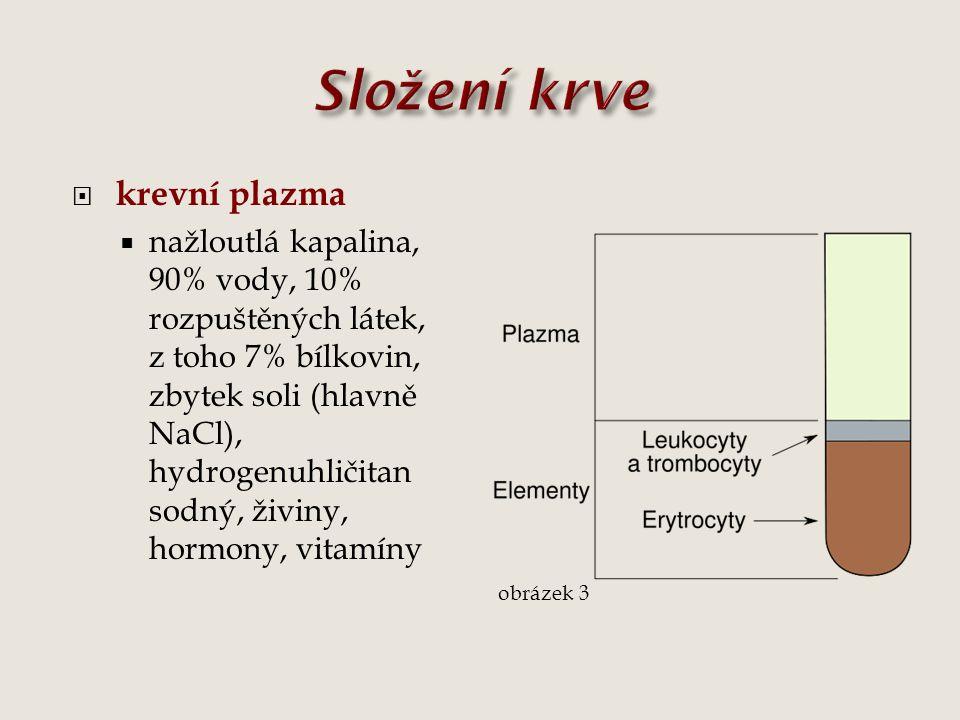 Složení krve krevní plazma