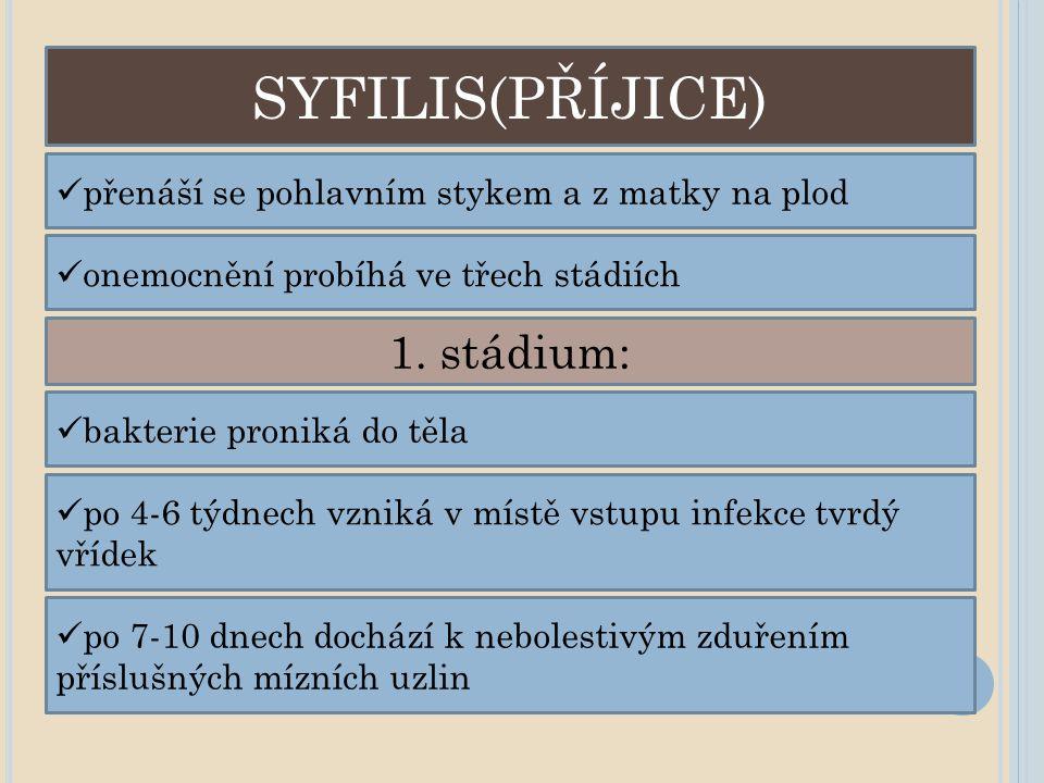 SYFILIS(PŘÍJICE) 1. stádium: