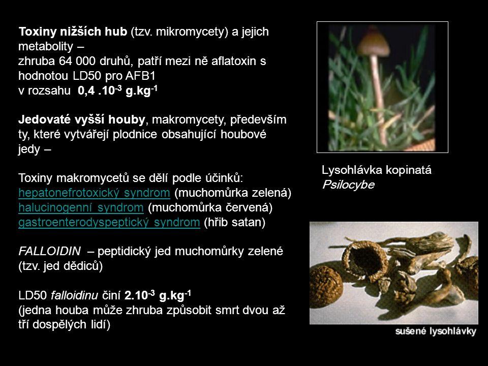 Toxiny nižších hub (tzv. mikromycety) a jejich metabolity –