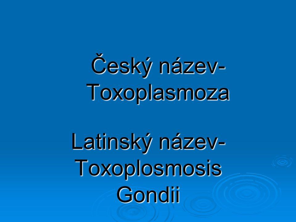 Český název-Toxoplasmoza