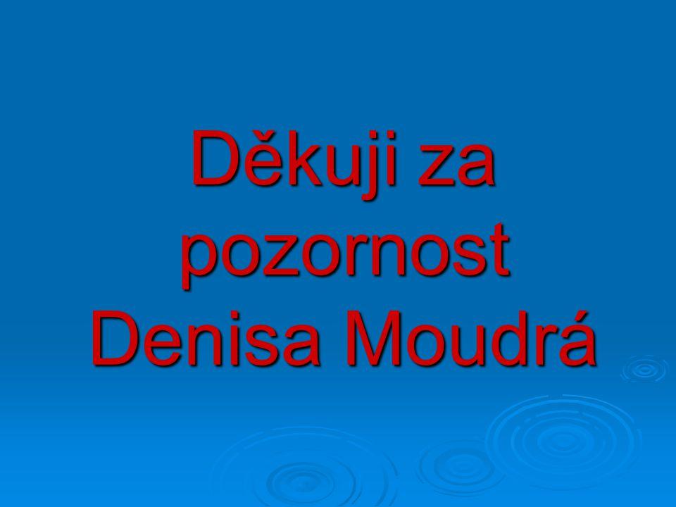 Děkuji za pozornost Denisa Moudrá