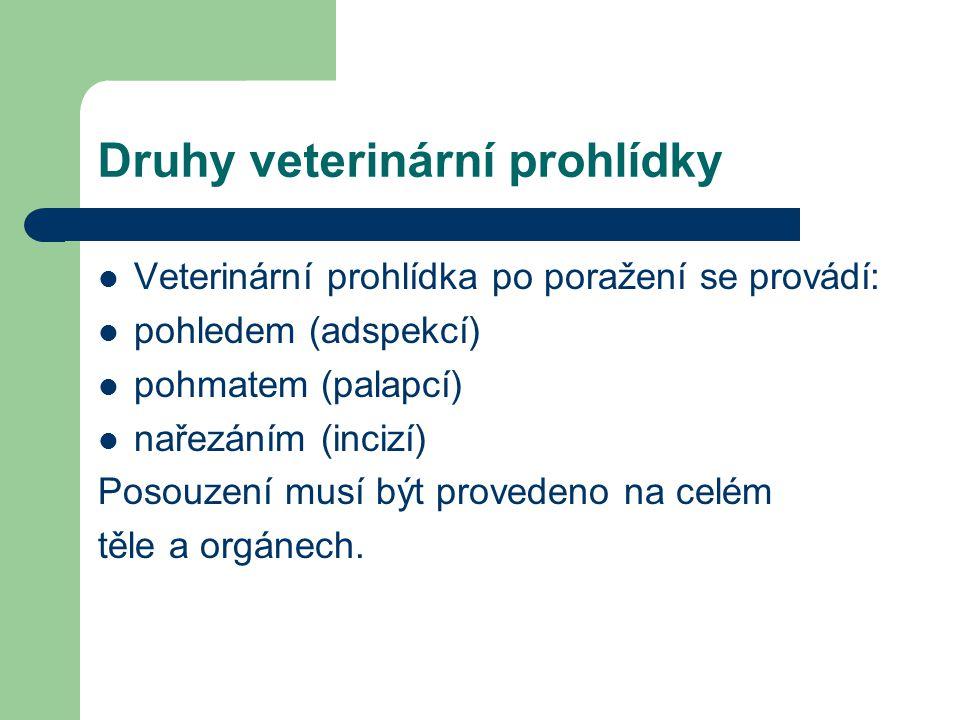 Druhy veterinární prohlídky