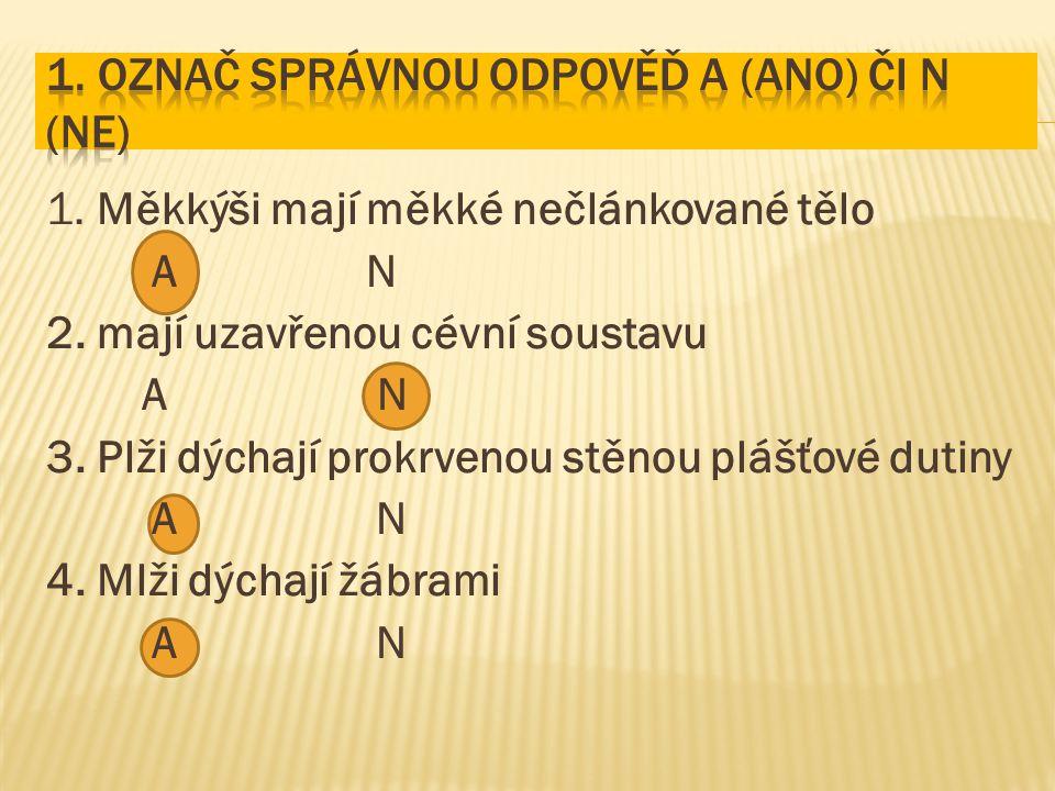 1. Označ správnou odpověď A (ano) či N (ne)
