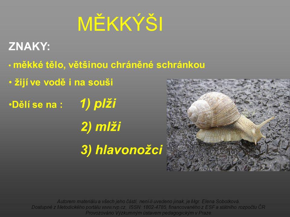 MĚKKÝŠI 2) mlži 3) hlavonožci ZNAKY: žijí ve vodě i na souši