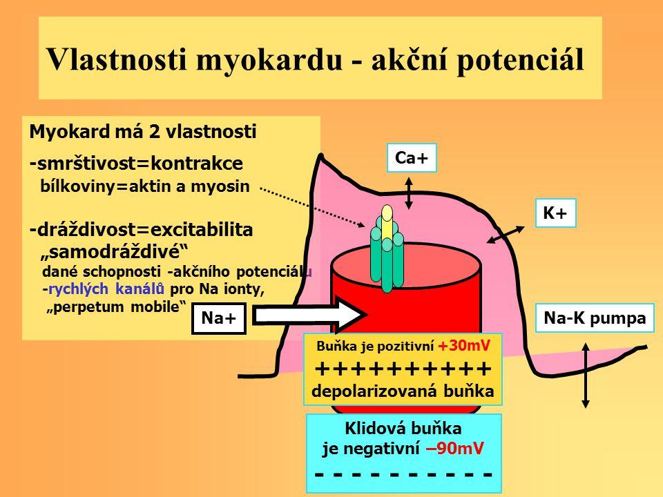 Vlastnosti myokardu - akční potenciál