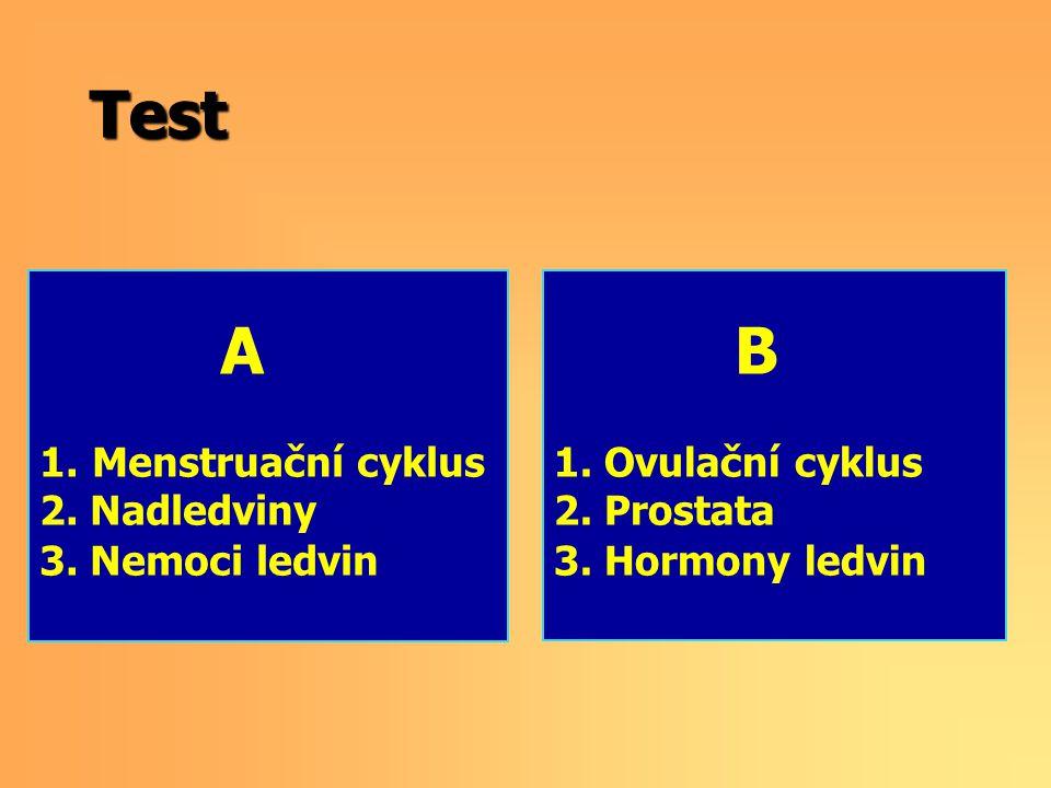 Test A Menstruační cyklus 2. Nadledviny 3. Nemoci ledvin B