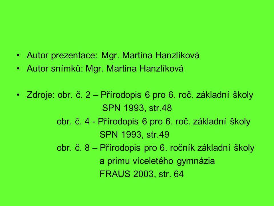 Autor prezentace: Mgr. Martina Hanzlíková