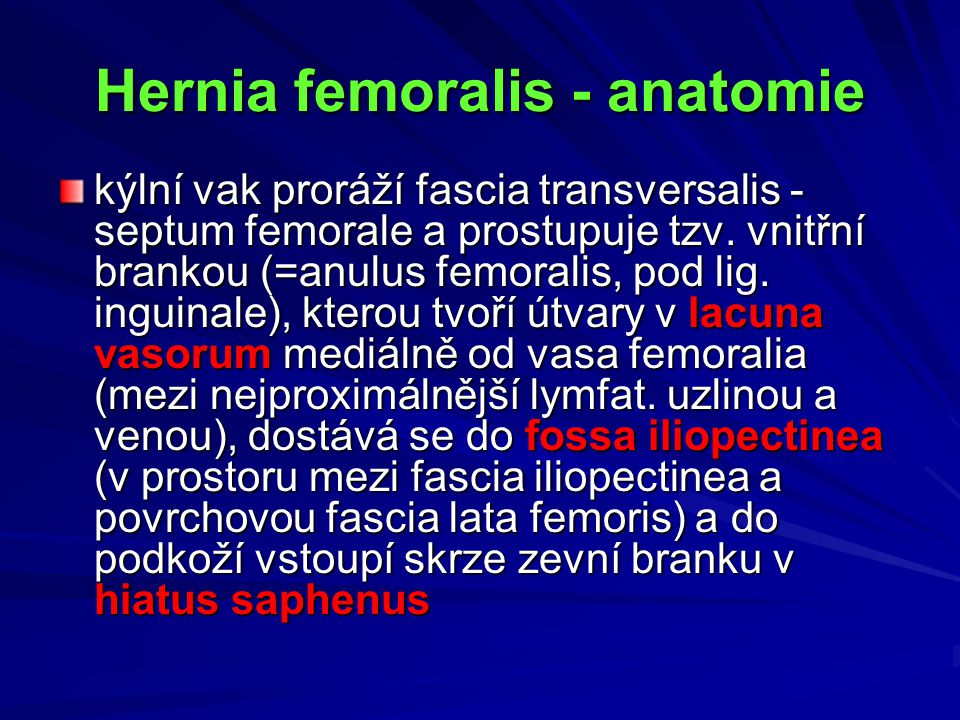 Hernia femoralis - anatomie