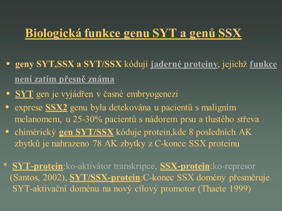 Biologická funkce genu SYT a genů SSX • geny SYT,SSX a SYT/SSX kódují jaderné proteiny, jejichž funkce není zatím přesně známa • SYT gen je vyjádřen v časné embryogenezi • exprese SSX2 genu byla detekována u pacientů s maligním melanomem, u 25-30% pacientů s nádorem prsu a tlustého střeva • chimérický gen SYT/SSX kóduje protein,kde 8 posledních AK zbytků je nahrazeno 78 AK zbytky z C-konce SSX proteinu * SYT-protein:ko-aktivátor transkripce, SSX-protein:ko-represor (Santos, 2002), SYT/SSX-protein:C-konec SSX domény přesměruje SYT-aktivační doménu na nový cílový promotor (Thaete 1999)