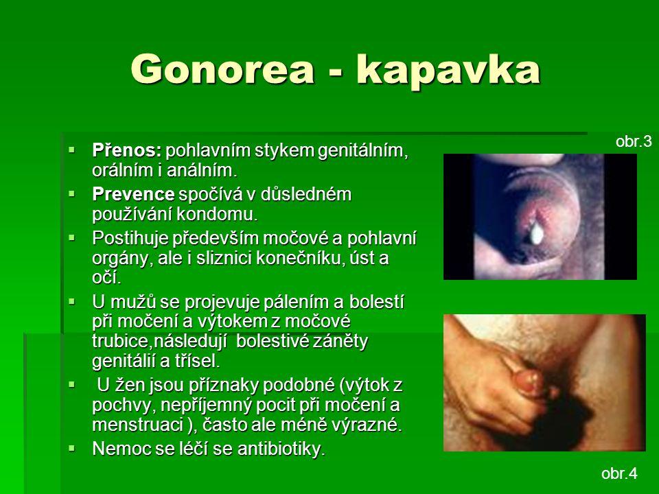 Gonorea - kapavka obr.3. Přenos: pohlavním stykem genitálním, orálním i análním. Prevence spočívá v důsledném používání kondomu.