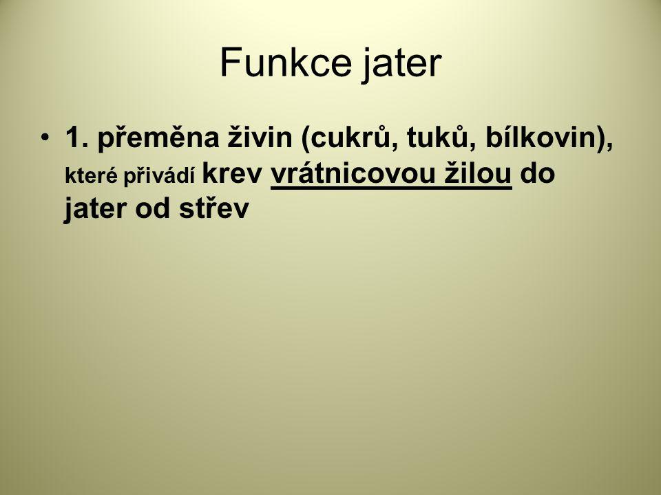 Funkce jater 1.