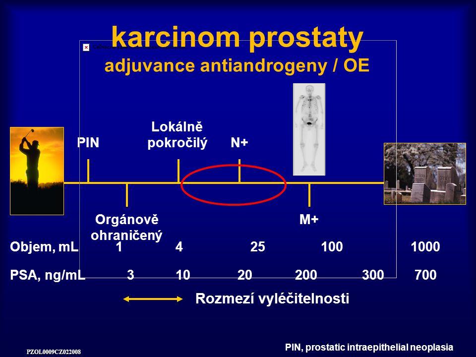 karcinom prostaty adjuvance antiandrogeny / OE