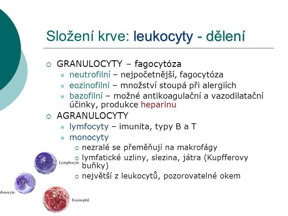 Složení krve: leukocyty - dělení