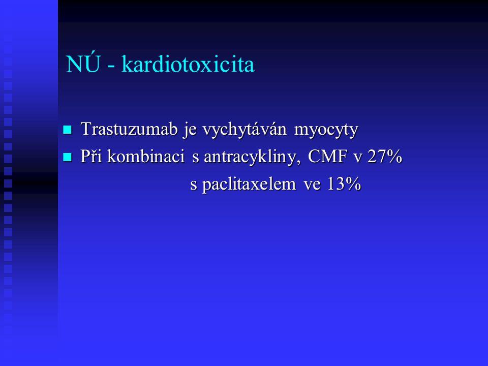 NÚ - kardiotoxicita Trastuzumab je vychytáván myocyty