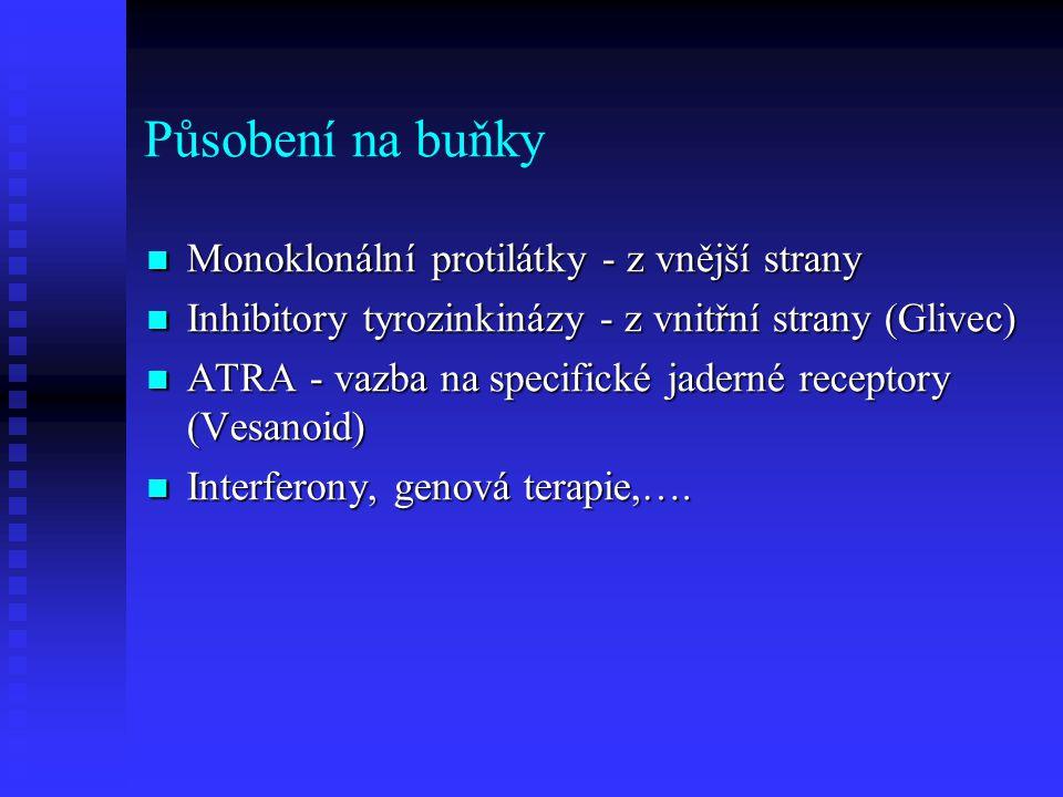 Působení na buňky Monoklonální protilátky - z vnější strany