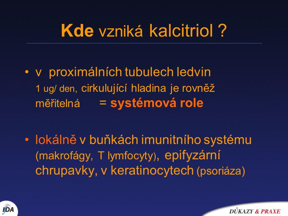 Kde vzniká kalcitriol v proximálních tubulech ledvin 1 ug/ den, cirkulující hladina je rovněž měřitelná = systémová role.