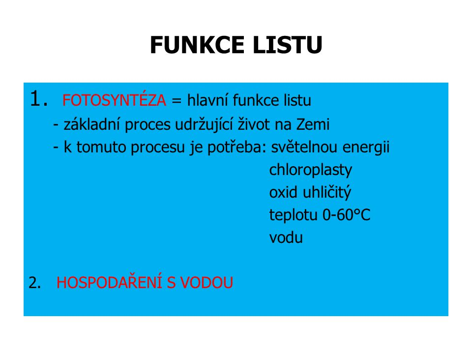 FUNKCE LISTU FOTOSYNTÉZA = hlavní funkce listu