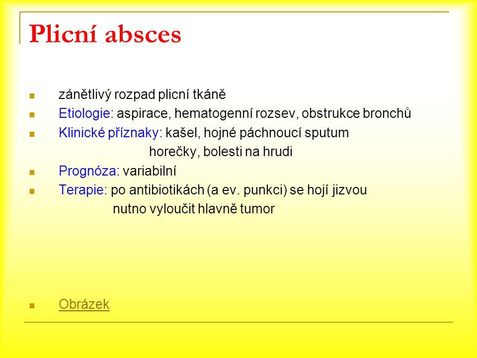 Plicní absces zánětlivý rozpad plicní tkáně