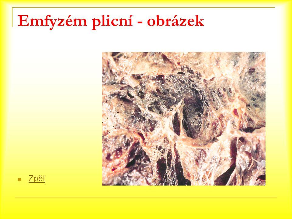 Emfyzém plicní - obrázek