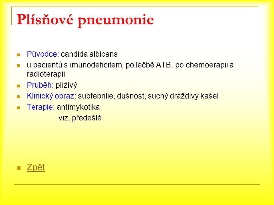 Plísňové pneumonie Zpět Původce: candida albicans