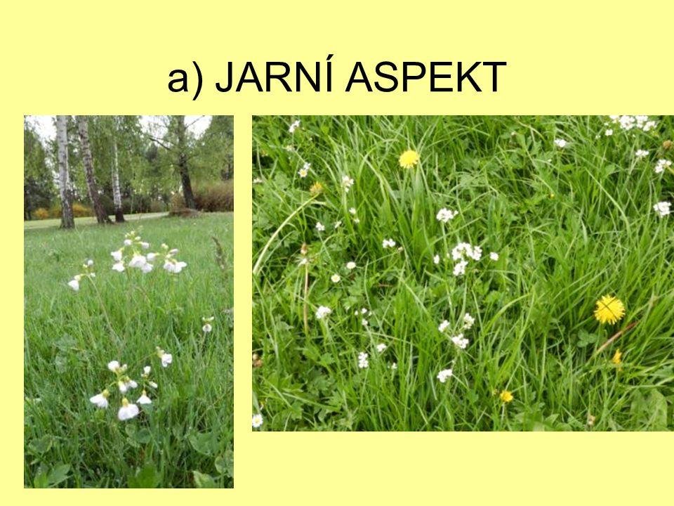 a) JARNÍ ASPEKT