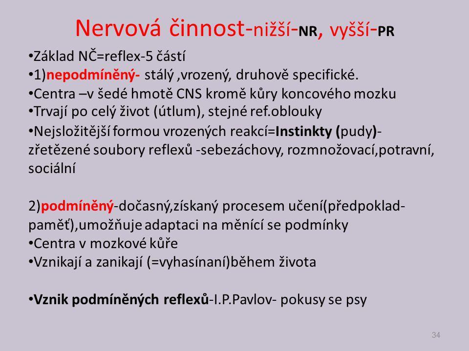 Nervová činnost-nižší-NR, vyšší-PR
