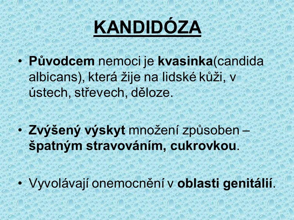 KANDIDÓZA Původcem nemoci je kvasinka(candida albicans), která žije na lidské kůži, v ústech, střevech, děloze.
