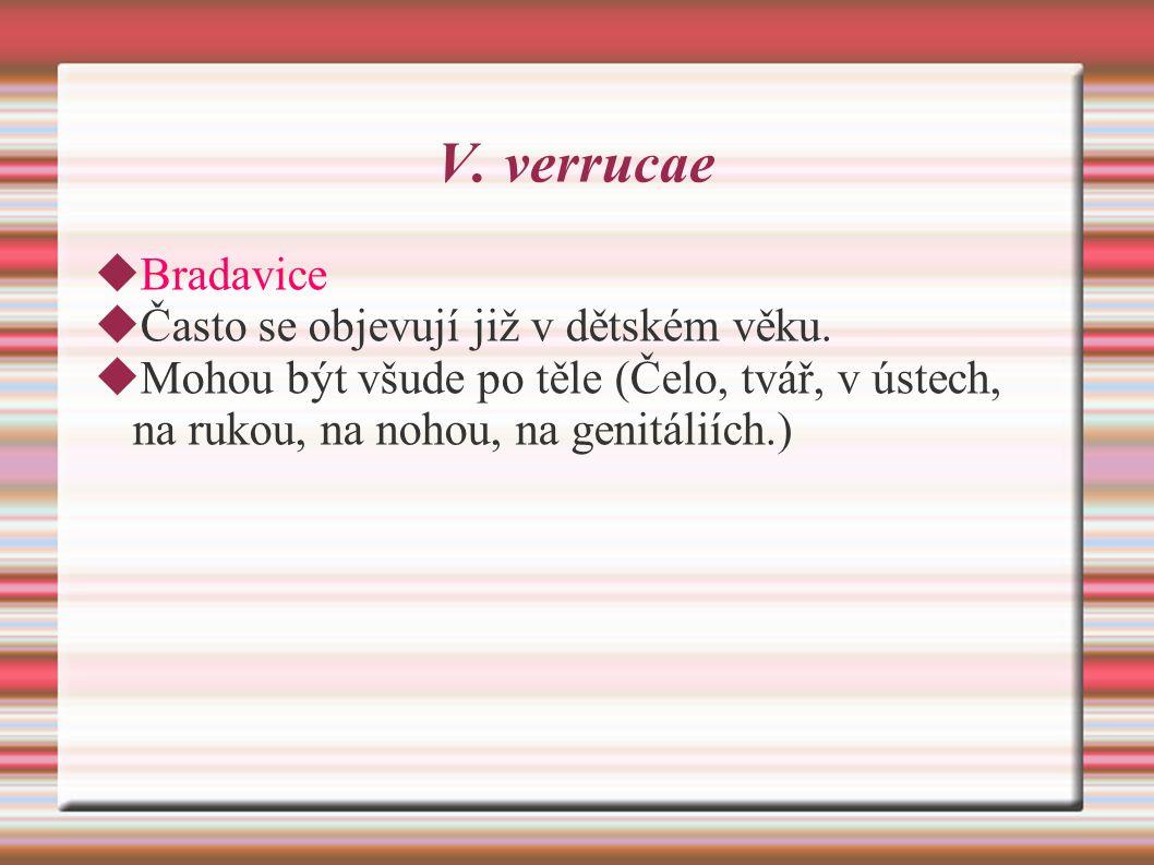 V. verrucae Bradavice Často se objevují již v dětském věku.