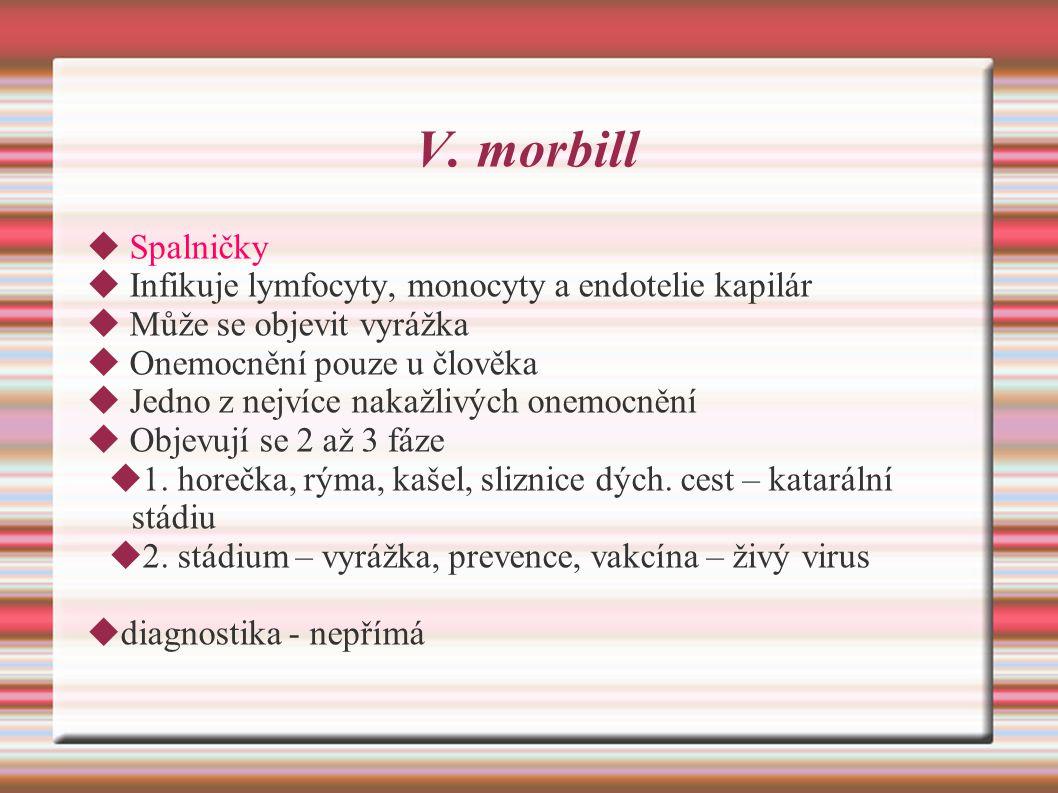 V. morbill Spalničky Infikuje lymfocyty, monocyty a endotelie kapilár