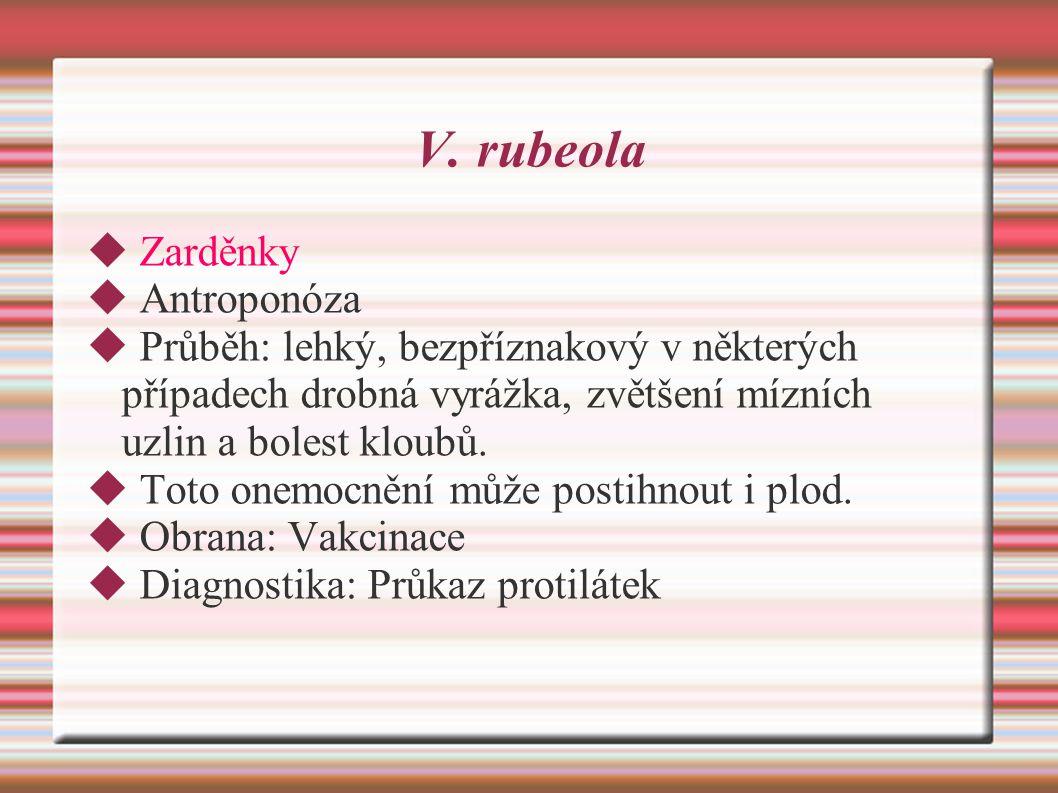V. rubeola Zarděnky Antroponóza
