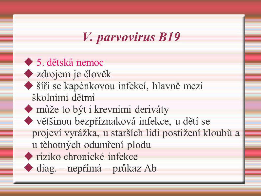 V. parvovirus B19 5. dětská nemoc zdrojem je člověk