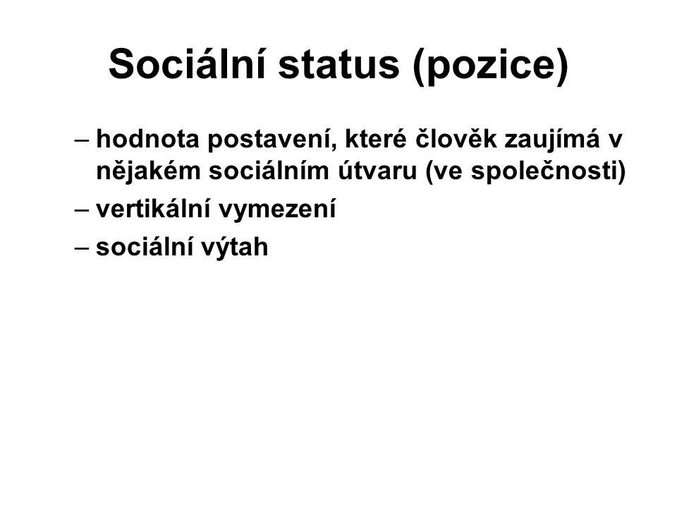 Sociální status (pozice)