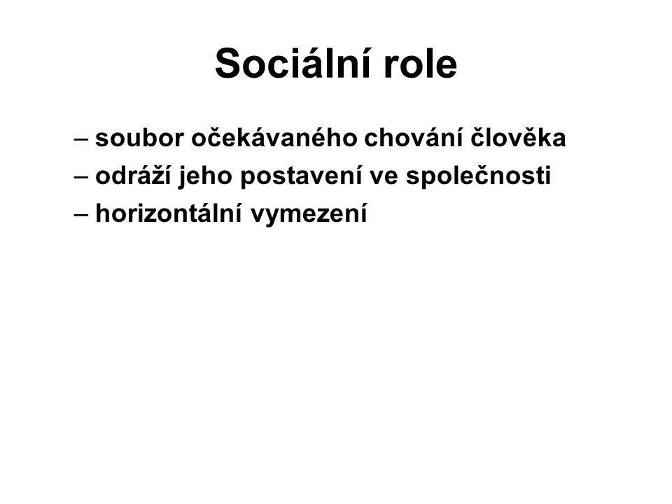 Sociální role soubor očekávaného chování člověka