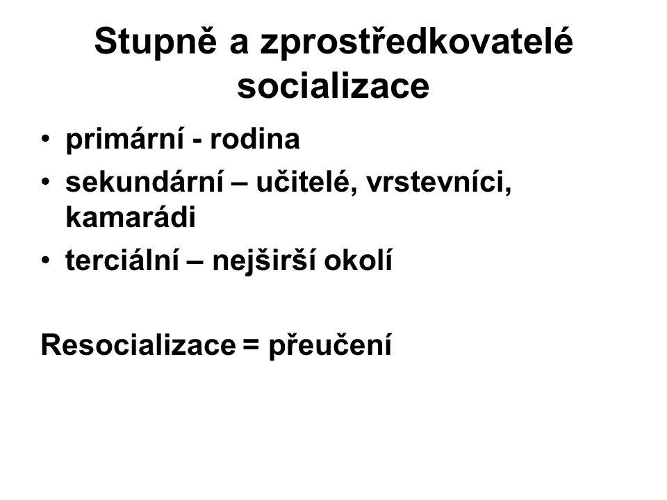 Stupně a zprostředkovatelé socializace
