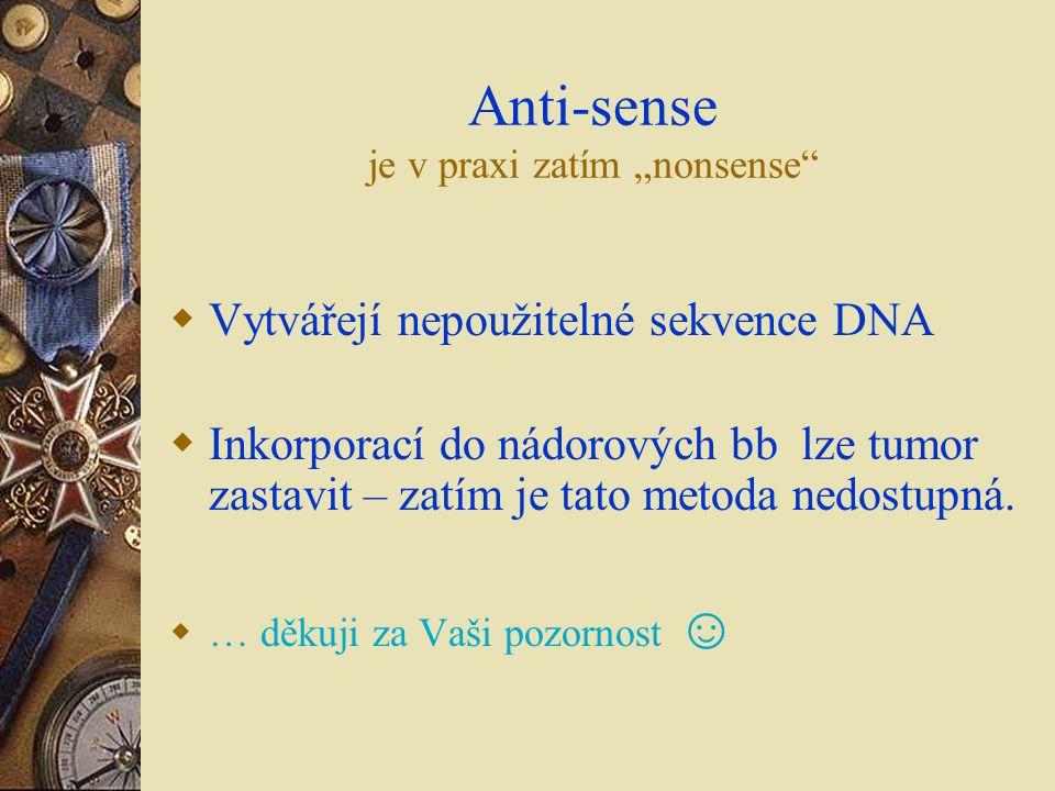 "Anti-sense je v praxi zatím ""nonsense"