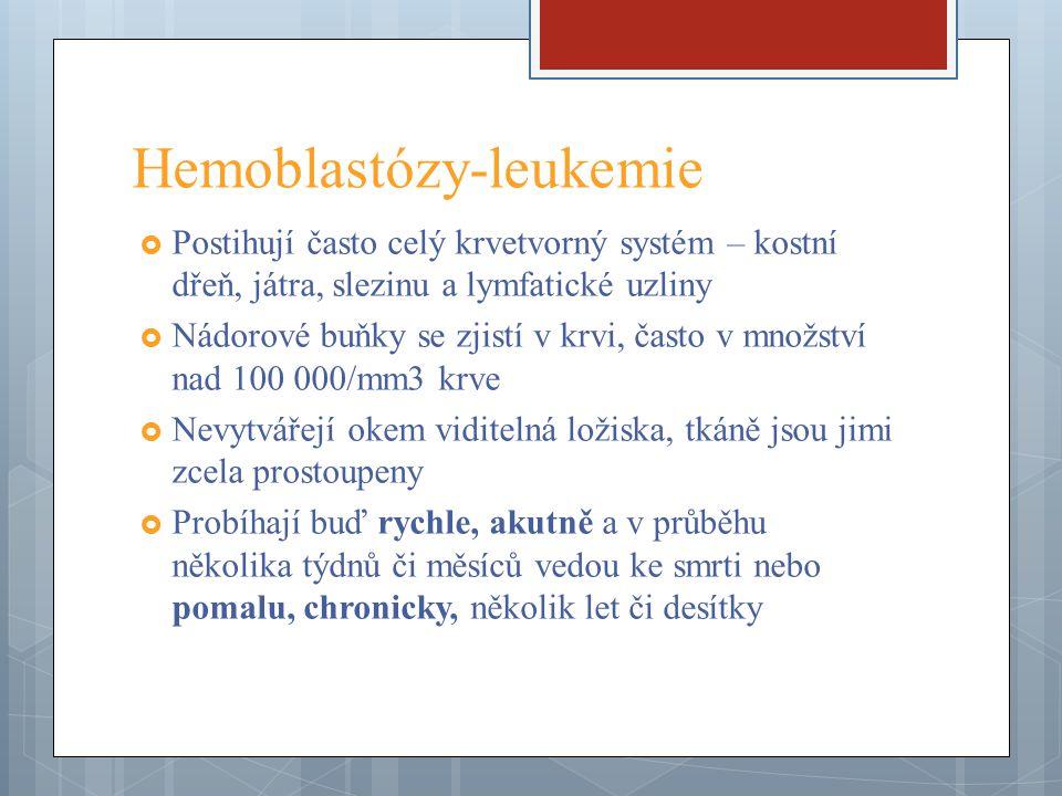 Hemoblastózy-leukemie