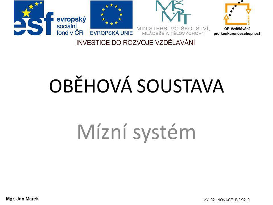 OBĚHOVÁ SOUSTAVA Mízní systém Mgr. Jan Marek VY_32_INOVACE_Bi3r0219