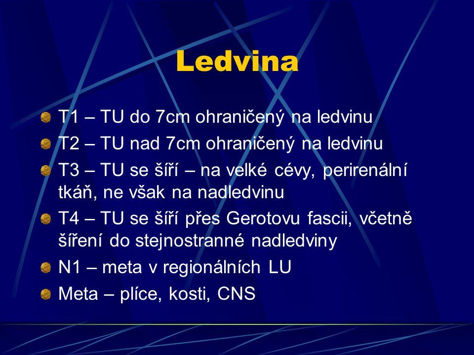 Ledvina T1 – TU do 7cm ohraničený na ledvinu