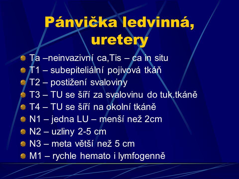 Pánvička ledvinná, uretery