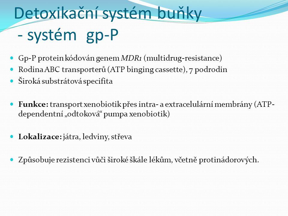 Detoxikační systém buňky - systém gp-P