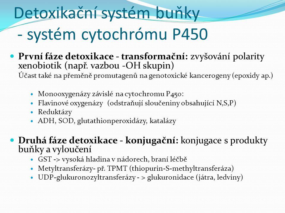 Detoxikační systém buňky - systém cytochrómu P450