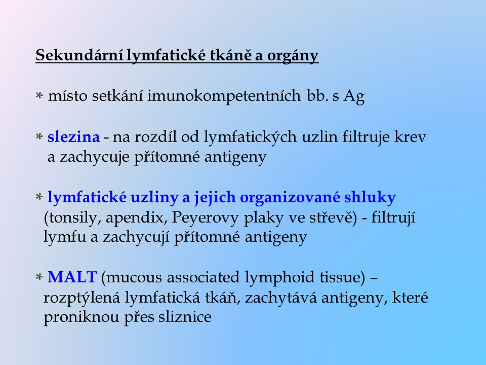 Sekundární lymfatické tkáně a orgány