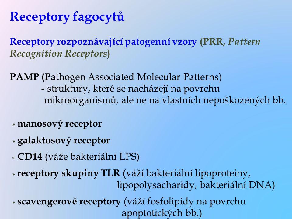 Receptory fagocytů Receptory rozpoznávající patogenní vzory (PRR, Pattern Recognition Receptors) PAMP (Pathogen Associated Molecular Patterns) - struktury, které se nacházejí na povrchu mikroorganismů, ale ne na vlastních nepoškozených bb.